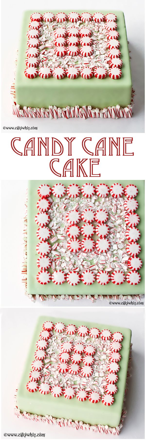 CANDY CANE CAKE... This stunning and delicious cake will blow your guests away! It's also a great way to use up all those Christmas candies! From cakewhiz.com
