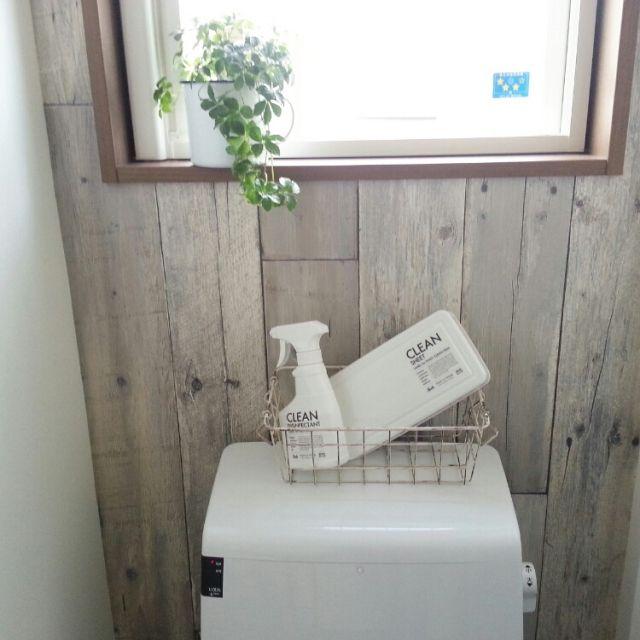 akichi99さんの、toilet ,日々,家,マイホーム,スリーコインズ,トイレ,観葉植物,アクセントクロス,古木,MONOTONE,モノトーンラベル,注文住宅,ボトル,暮らし,Myhome,バス/トイレ,のお部屋写真