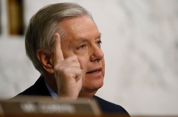 """South Carolina Sen. Lindsey Graham said that there's """"nothing crazy"""" about President Donald Trump's recent string of bombastic tweets and comments. """"And I said Mr. President, you're watching MSNBC at 11:00,"""" Graham said. """"If you stop watching it, their audience goes down by half."""""""