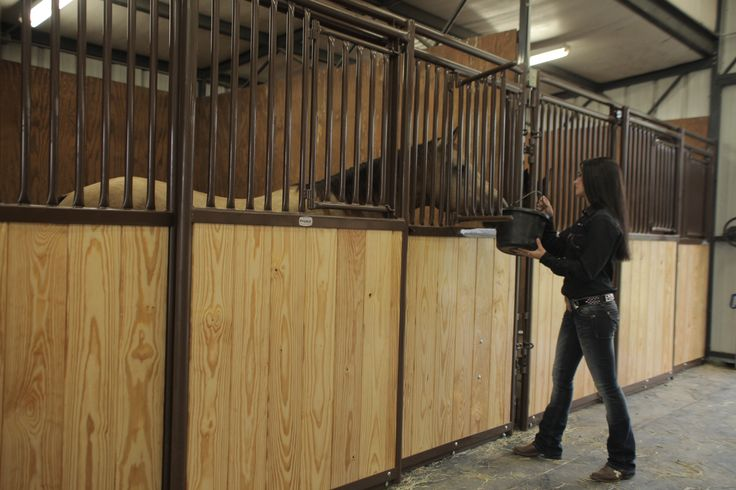 Genevieve using Premier horse stall window