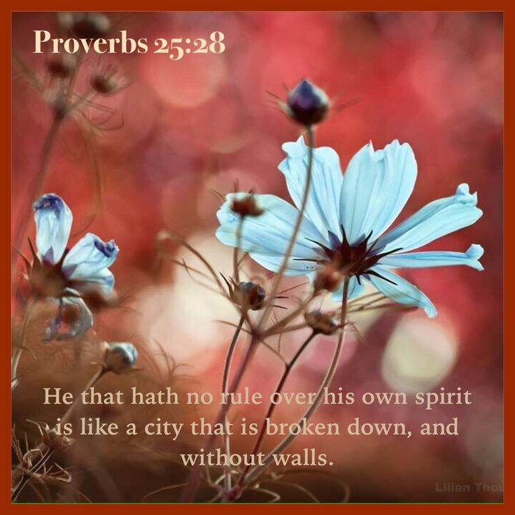 """""""Whoever has no rule over his own spirit Is like a city broken down, without walls."""" Proverbs 25:28 NKJV"""