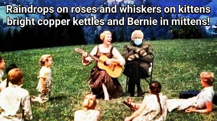 Pin By Eta E Rock On Bernie Sanders Memes In 2021 Whiskers On Kittens Kittens Memes