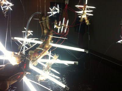 Profesores de artes visuales: + Proyecto ADN