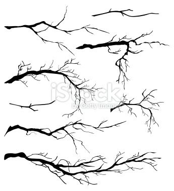 branch   Bare Branches Royalty Free Stock Vector Art Illustration