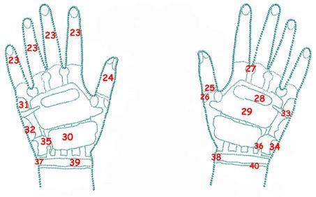 Points d'acupuncture extérieur des mains