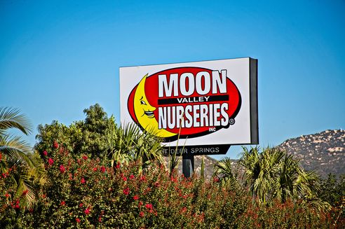 Moon valley nursery - wholesale and retail.  with new retail locations near LA
