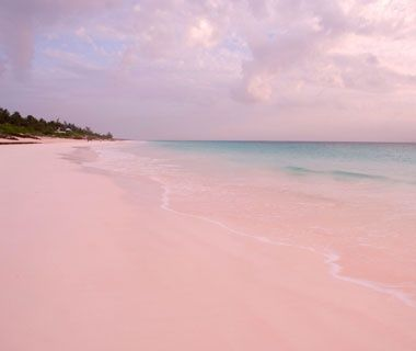 Harbour Island, Bahamas - Apparently one of the Caribbean's prettiest beaches with 3 miles of PINK sand!! :-)
