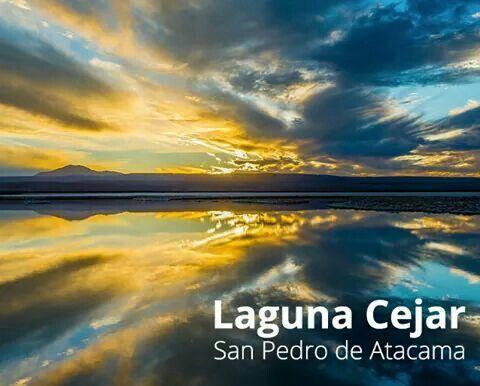 Laguna Cejar# San Pedro de Atacama Chile