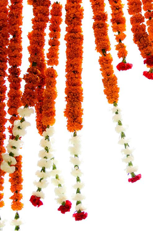 Marigold flowers are traditionally used at an Indian Wedding. The saffron color is considered to be auspicious.   Vibrant Indian Wedding by Donna Newman Photography