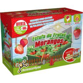 Estufa de Frutas Morangos