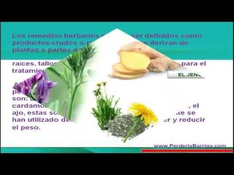 Las hierbas para adelgazar http dietasparabajardepesos for Plantas para bajar de peso