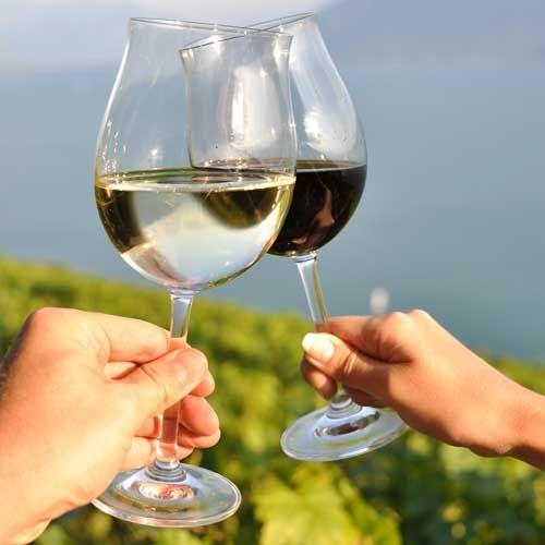 What Wine Experts Drink: The 6 Best Summer Wines  Photo by: Shutterstock.com