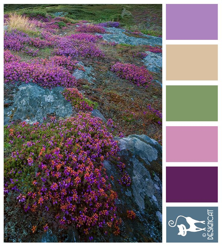 Highland - Lilac, coffee, cream, sage, green, pink, purple, blue Designcat Colour Inspiration Board