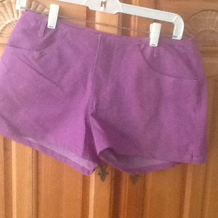 Womens Billabong Purple Shorts Size 3