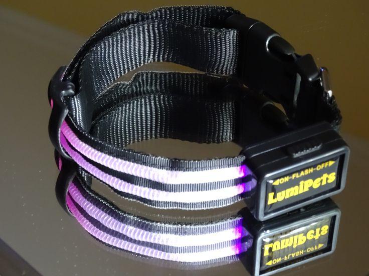 Collar led batería recargable por USB. Doble banda de fibra óptica. Elegante y resistente. Marca LumiPets.