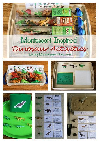 Montessori-Inspired Dinosaur Activities- Lots of fantastic ideas for a dinosaur unit study! @Amy Lyons Lyons Lyons Lyons Lyons Lyons Lyons Sever