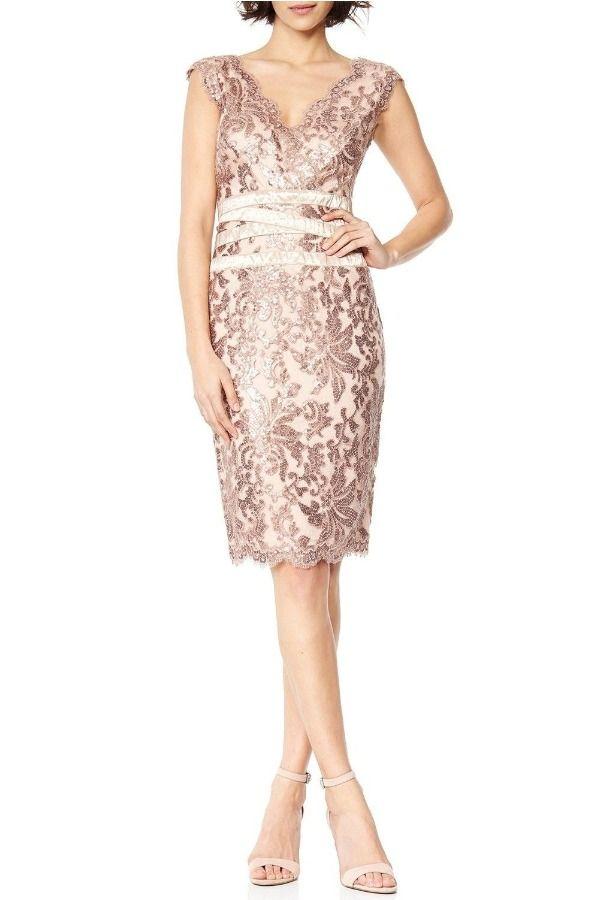 Tadashi Shoji Paillette Embroidered Tulle Lace Sheath Rose Dress