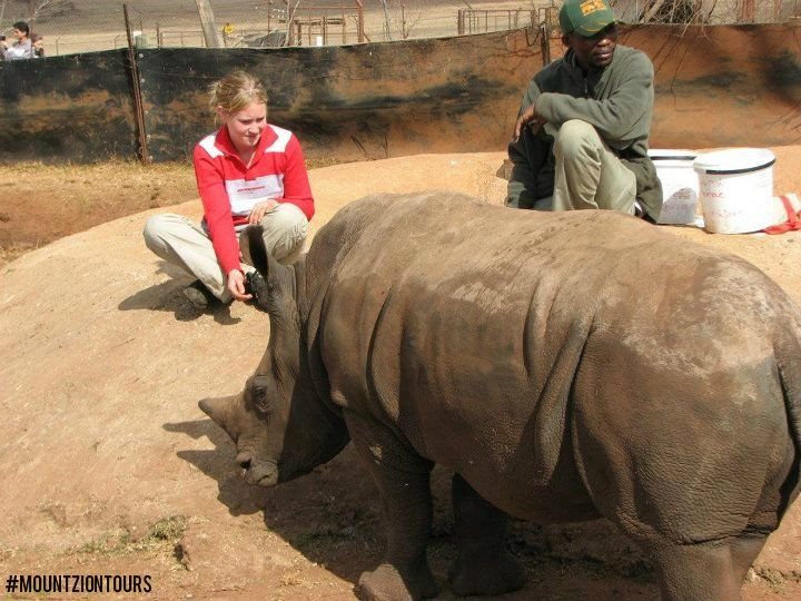 Big Five viewing and touching a Rhino. Never miss this amazing experience. Book now at:http://www.mountziontours.co.za