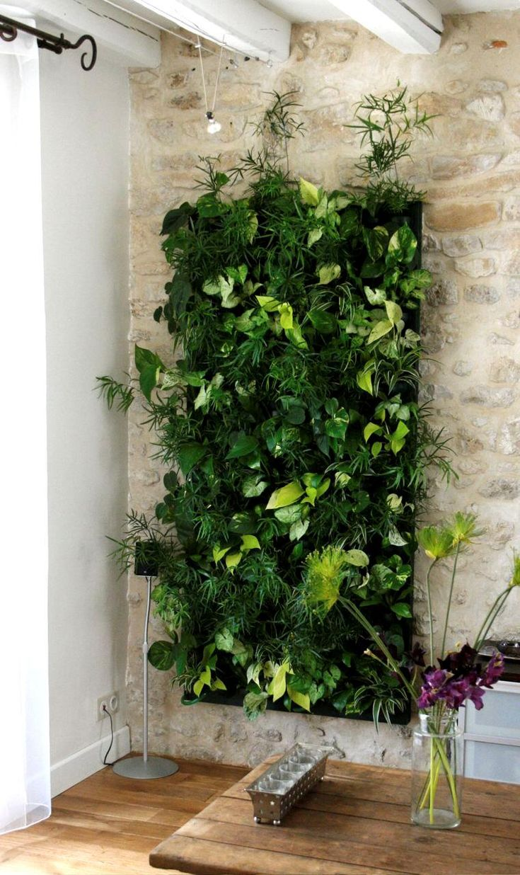 Urban wall gardening - Find This Pin And More On Green Living Walls Vertical Garden Urban Farm