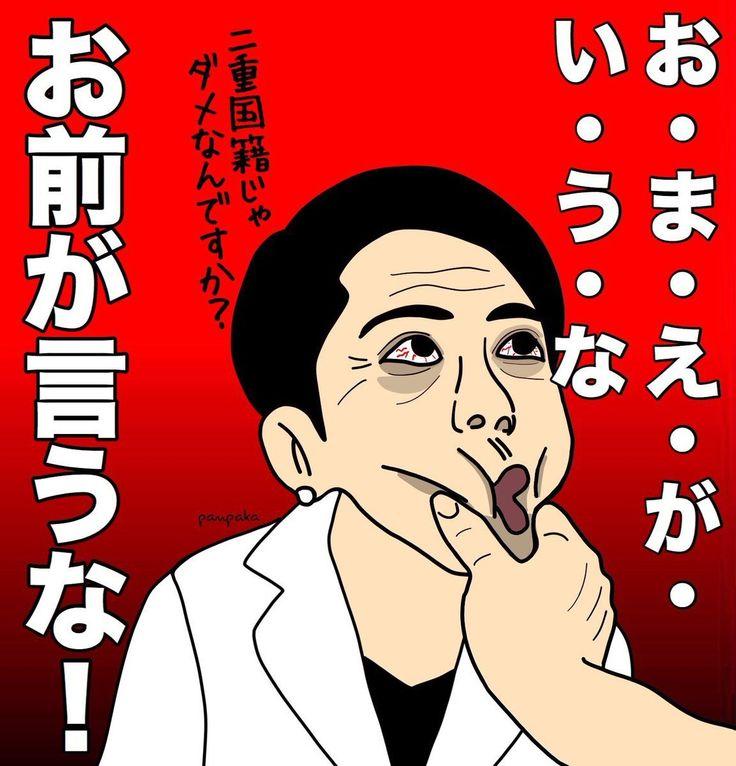 蓮舫「私は国民の感情はとても大切だと思う。政府はそこを軽んじるな」【沖縄オスプレイ着水・不時着問題】