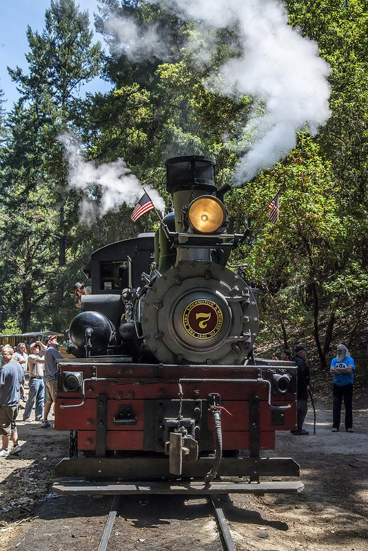 Board a historic steam train for a 1-hour ride through the Santa Cruz mountains from Felton's Roaring Camp, and go deep into redwood groves and California's past.5/5(46).