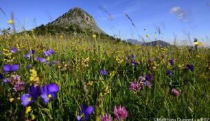 Sites touristiques Ardèche : lieux touristiques à voir en Ardèche - Ardèche Guide