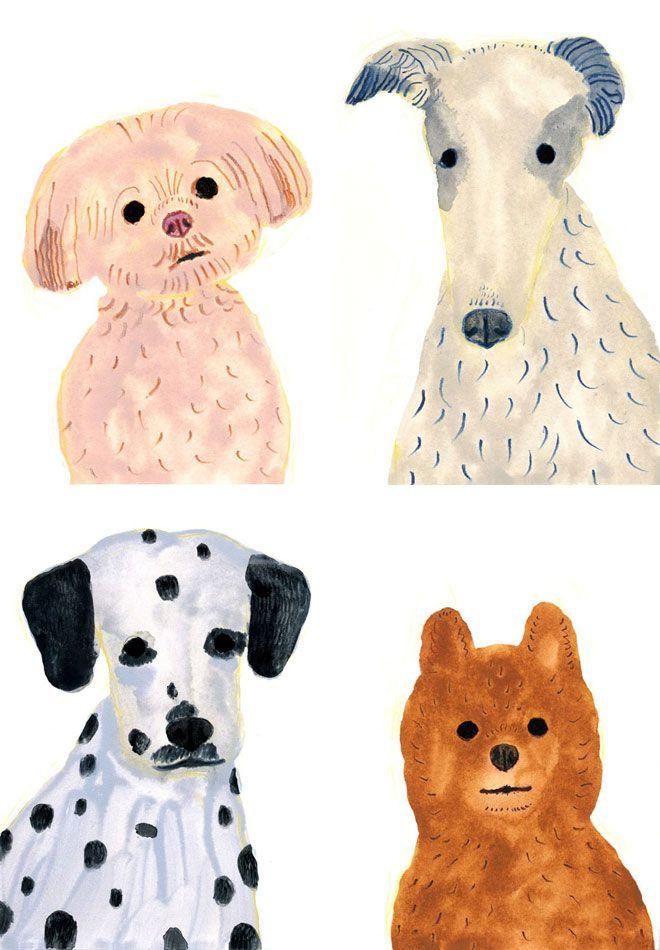 Itsuko Suzuki - dog portraits