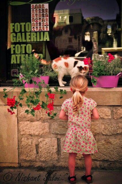 Cat and the little girl, Split,  Croatia.