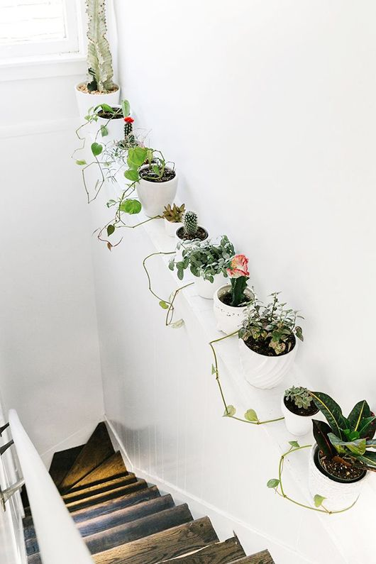 houseplants up the staircase, via refinery29