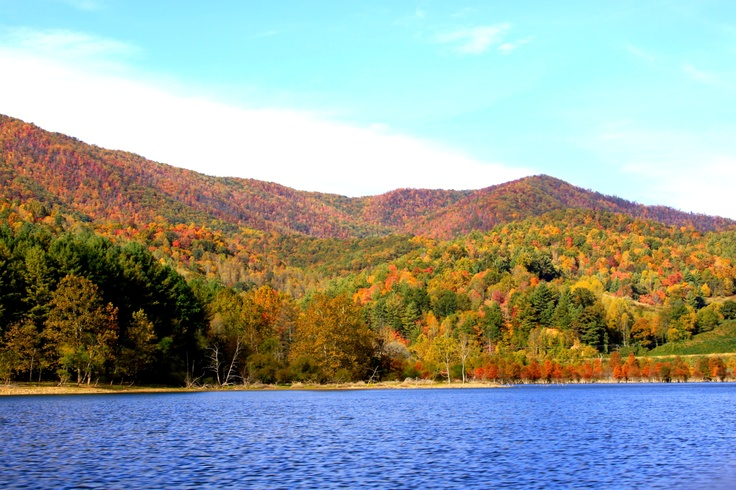 1000 Images About Watauga Lake On Pinterest
