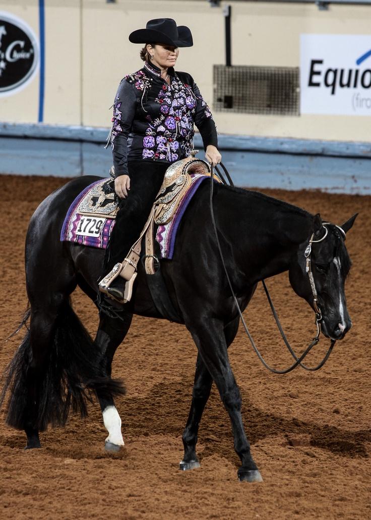 A Certain Vino!!! The most amazing pleasure horse, ever