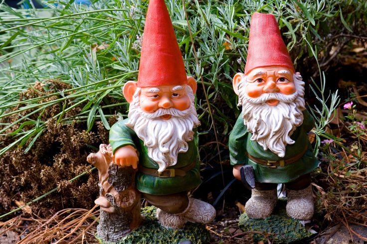Gnome In Garden: 98 Best Garden Gnomes Images On Pinterest