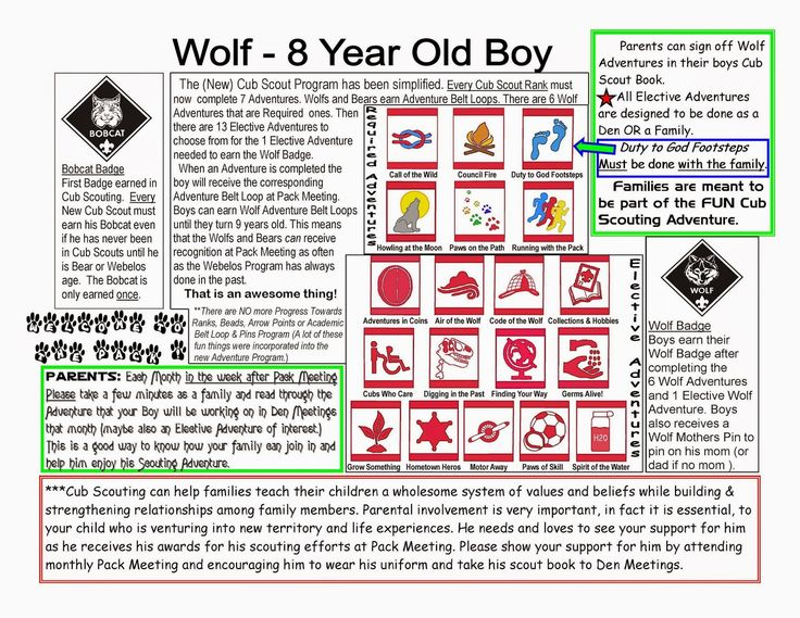 Cub Scout Stuff: Cub Scout Wolf Basics