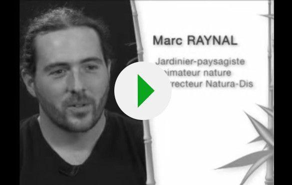 video-naturadis