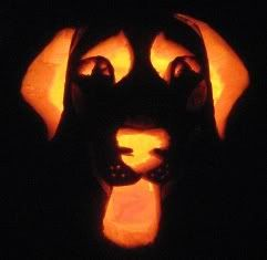 labrador retriever pumpkin stencil | It's not perfect because I don't actually have any pumpkin carving ...