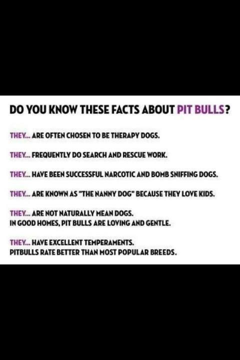 Facts about Pit Bulls