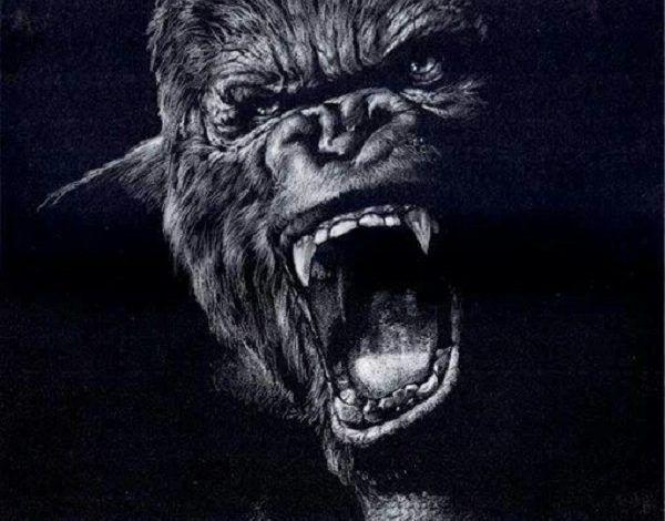تفسير حلم الغوريلا في المنام Gorilla Animals Historical Figures