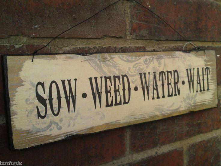 semina, togli le erbacce, annaffia e aspetta #GardenQuotes