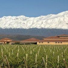 Agrelo, corazón turístico del vino argentino
