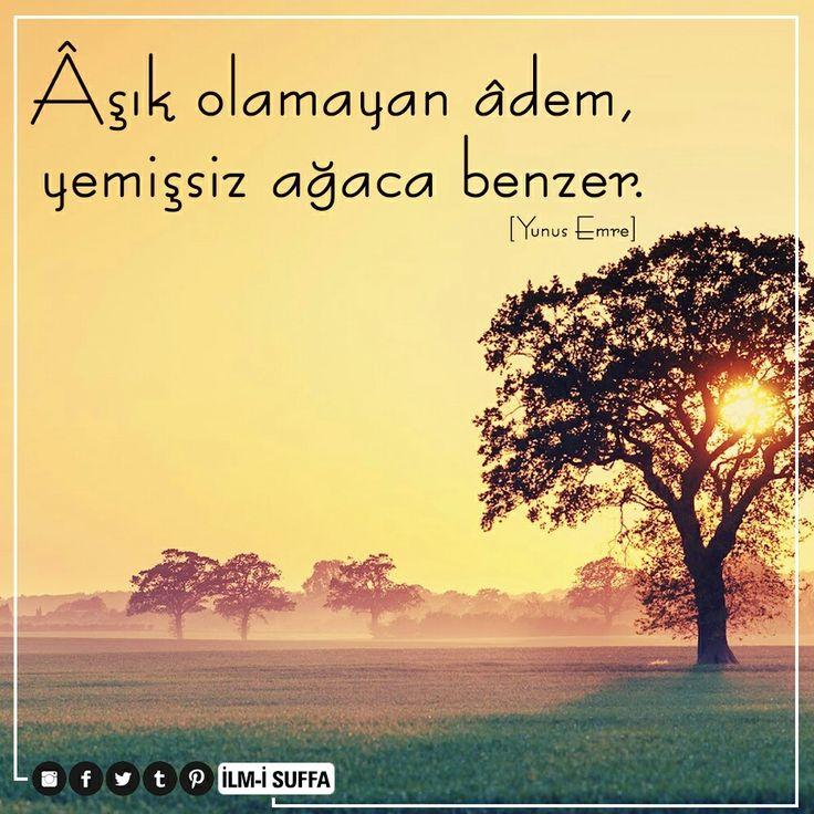 ❤ Âşık olamayan âdem, Yemişsiz ağaca benzer.  [Yunus Emre]  #aşk #adem #yemiş #ağaç #söz #yunusemre #sözler #güzel #ilmisuffa