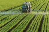Observational Study Links Monsanto's Roundup to Chronic Kidney Disease