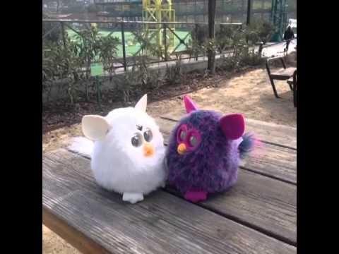 Es día 2 de marzo y los Furby charlan en un parque sobre el próximo al Estado Santiago Bernabeu.