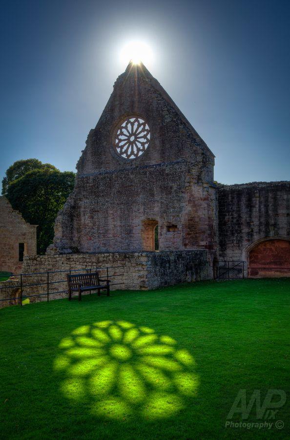 Sunlit Reflection - Mdryburgh Abbey - Scottish Border - Scotland