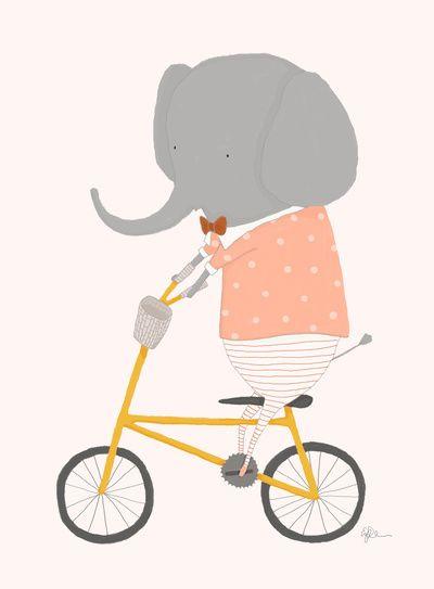 o elefante não parte a bicla?