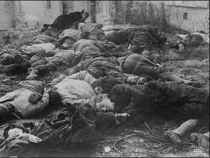 За что сражались советские люди.Немцы ходили по хатам… Собирали тех, у кого дети ушли в партизаны… И отрубили им головы посреди деревни… Нам приказали: «Смотрите». В одной хате никого не нашли, поймали и повесили их кота. Он висел на веревочке как ребенок». Люба Александрович, 11 лет