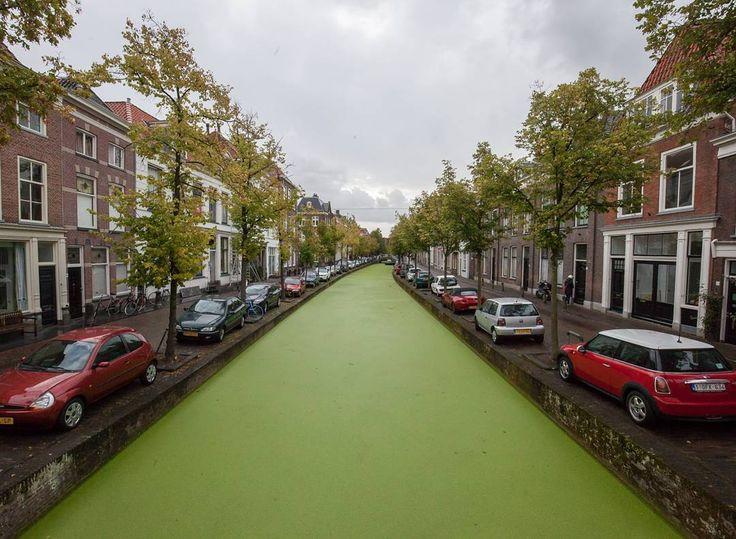 Estacionar na cidade de Delft não é pra amadores (ou bebuns). E na real as vagas ali são só para moradores: visitantes precisam pagar estacionamento privado ou encontrar uma vaga fora do centro da pequena cidade holandesa. #delft #netherlands #holanda #holland #dutch #europa #europe #eurotrip2016