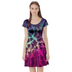 Just A Stargazer Short Sleeve Skater Dress