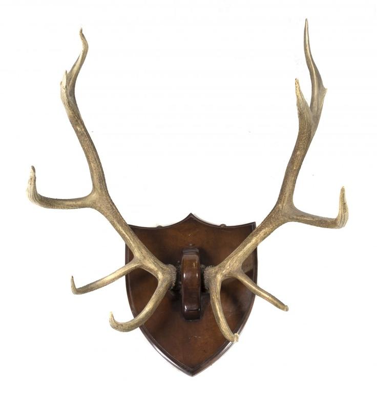 Deer Antler Wall Painting