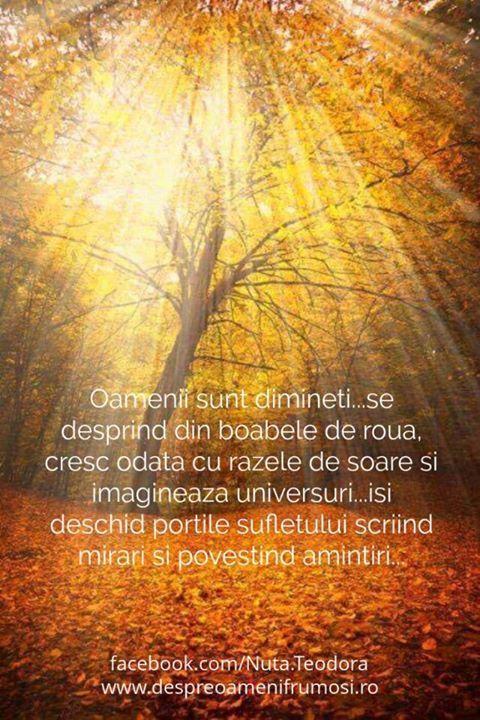 Oamenii sunt dimineti...se desprind din boabele de roua cresc odata cu razele de soare si imagineaza universuri...isi deschid portile sufletului scriind mirari si povestind amintiri... BUNA DIMINEATA! O zi splendida tuturor... http://ift.tt/2dUqotH http://ift.tt/2feIw08