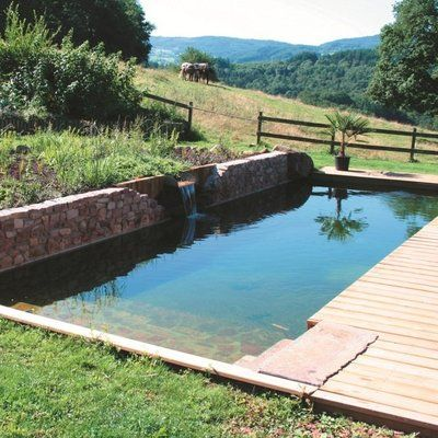 65 best Piscines naturelles images on Pinterest Natural pools